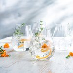 Riedel Optical Gin Glass -lasi 4kpl